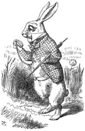 alice-rabbit